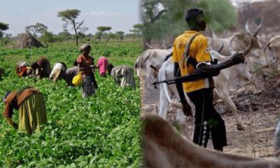 Farmers and Killer Herdsmen